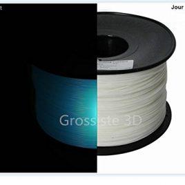 Filament 3D Phosphorescent Bleu PLA 1.75 mm pour imprimante 3D Bobine de 1 Kg Livraison gratuit Grossiste3D®